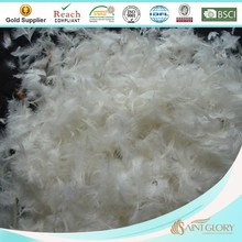 washed feather raw material 100% duck feather