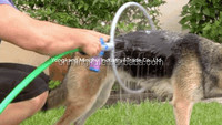 Hot-sale Dog washer/pet washer/pet grooming kit with towel
