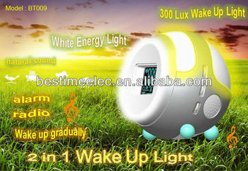 2 in 1 Wake Up Light