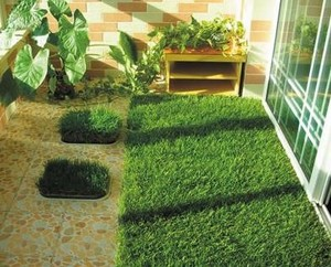 11000Dtex China four color artificial synthetic grass lawns customized artificial grass for balcony
