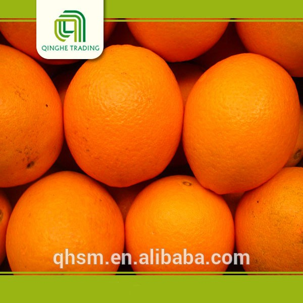 Brand new pakistani kino with low price nanfeng orange