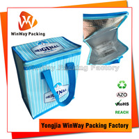 Cheap Price Waterproof PP Non Woven Cooler Bag