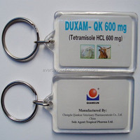 DIY Printed solution Acrylic Keyring Wholesale