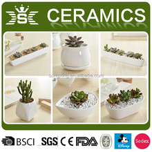 Modern plain indoor decor mini white ceramic flower pot