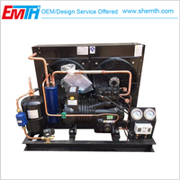 copeland scroll compressor condensing unit for cold room storage
