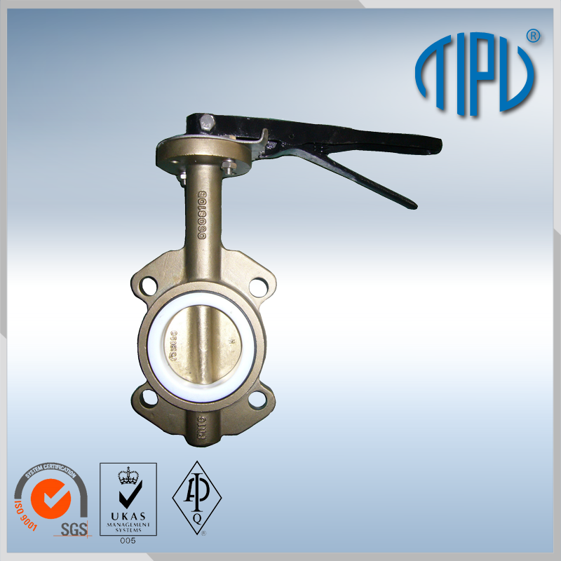 Normal Type worm gear wafer butterfly check valve for water