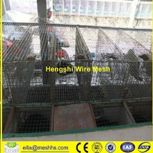 hot dipped galvanized wire breeding mink cages