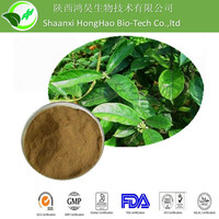 Chinese Sex Herbal Plant extract damiana powder/damiana extract by HPLC
