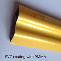 Plastic Product Golden Plastic Extrusion Profiles