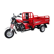 3 wheel cargo motor trike for adults