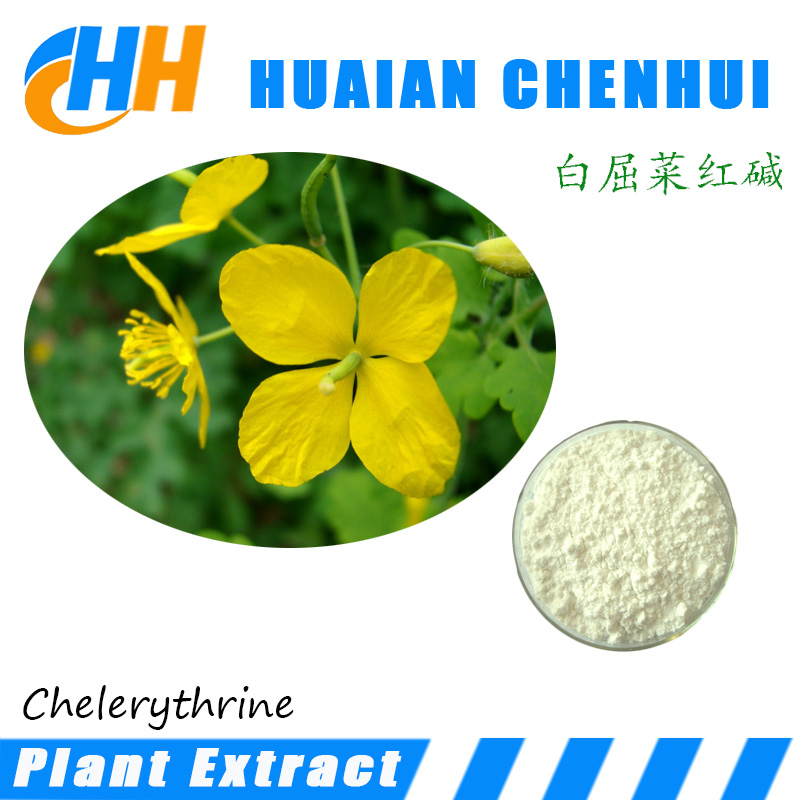 Antibacterial drugs Toddaline / Chelerythrine 98% CAS No. : 34316-15-9