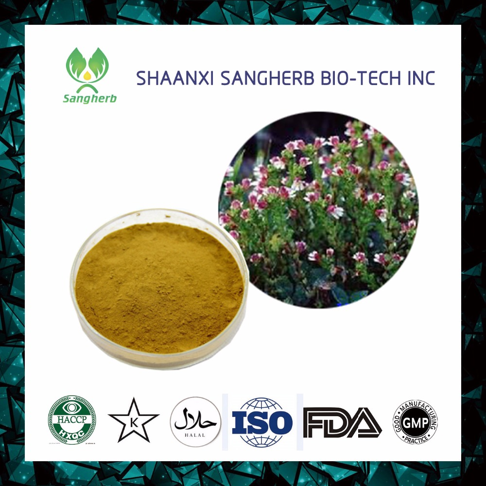 GMP standerd High quality Eyebright Extract powder