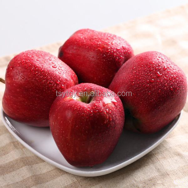 Sell in bulk fresh apples market prices fresh red delicious apples