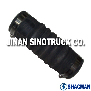 Heavy Duty Truck SHACMAN Spare Parts (AZ9118530005) Down Water Pipe With Clips For Sale