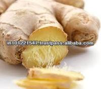 Ginger Oleoresin from India
