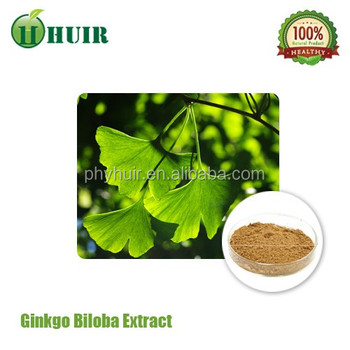 China supplier herbs supplements powder Ginkgo Biloba Leaves Extract