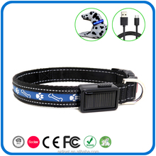 Hot Selling Labrador Ce Nylon Webbing Strap Light Up Led Dog Collar