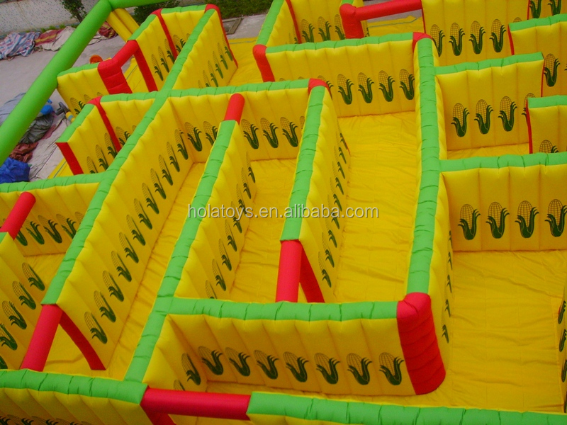 inflatable maze (1).JPG