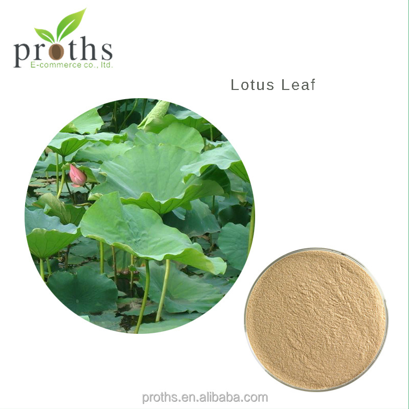 Proths free sample fresh lotus leaf supplier