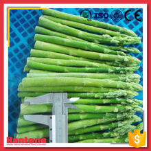 Sale Low Price IQF Asparagus