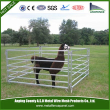 6 Bar Cattle panel, Goat & Sheep pens