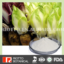 100% Natural Reducing cholesterol chicory dry extract