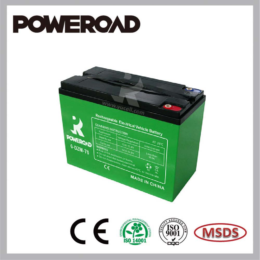Poweroad E-Bike battery for Electric bicycle 6-DZM-70