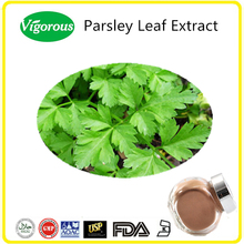 Relieve Kidney Pains Parsley Leaf Extract/Parsley Extract/Petroselinum crispum Powder