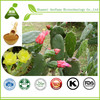 Plant Extract Prickly Pear Juice Seed Cacti Extract
