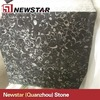 /product-gs/newstar-polished-black-and-white-granite-tiles-1533287017.html