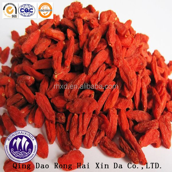 Best quality Dried Goji berry fruits in Ningxia