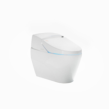 Self cleaning nozzles intelligent bathroom spy toilet intelligent