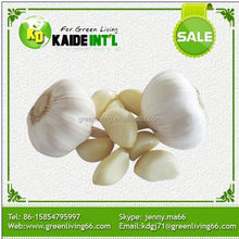 Fresh Pure Pure White Garlic Specification (Low Price)