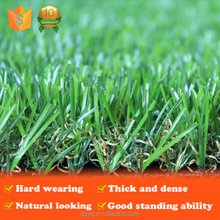 best price hot selling cheap decorating garden grass for wholesale with certificate
