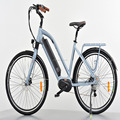 electric bike city 36v 250w with CE and EN