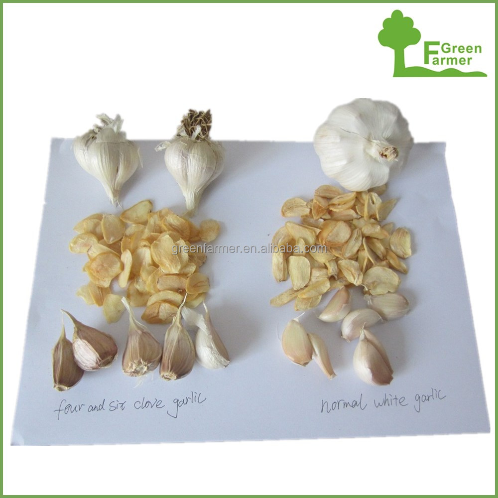 New Crop good quality low price dehydrated garlic
