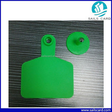 Middle size Green color Ear tag for Cattle horse camel use