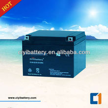 Sealed Lead Acid Battery Maintanence Free Battery 12v 24ah