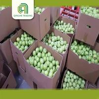 cheap wholesale royal gala apples sweet fresh fruits gala for sale