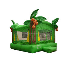 Inflatable moon bouncer a wide selection of colours and designs W1268