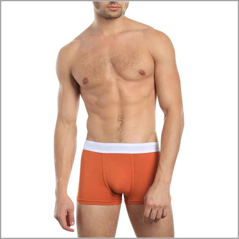 PATON Custom brand designs Plain color cotton mens underwear boxer briefs