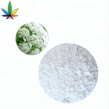 High Quality Natural 98% Osthole Fructus Cnidium Extract Powder CAS NO. 484-12-8