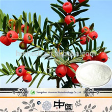 World best selling products Chinese yew Extract powder