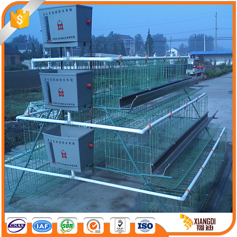 China Wholesale cool chicken cage for sales