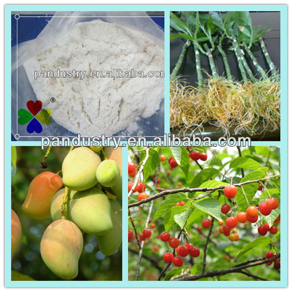 Plant Growth Regulator 98%TC water soluble IBA-K,rooting hormones