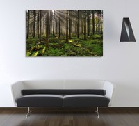 High quality morning forest wood frames for canvas prints, custom picture