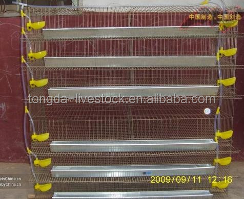 Professional farm equipment cages quail with CE certificate cheap quail cage eggs