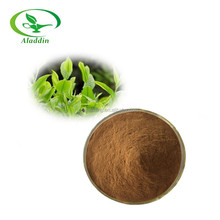high quality Yerba Mate Extract powder/yerba mate P.E. factory direct sale and good price