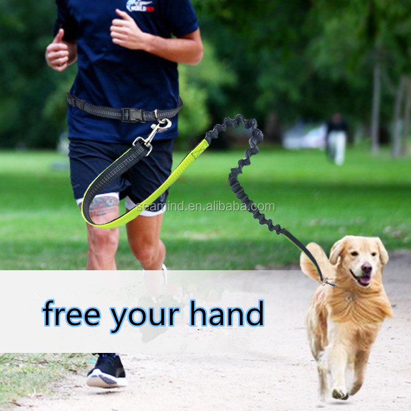 Free Your Hand Convenient Nylon Dog Leashes with Led Belt for Dog's Safe Collar Accessories