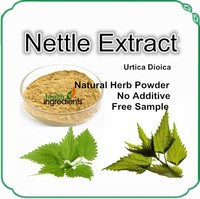 Cheap price Stinging Nettle Extract